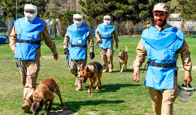 Man's best friend: The dogs who sniff out explosives in