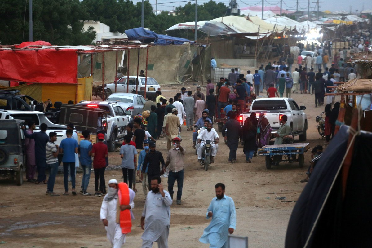 At Pakistan's largest livestock market, COVID-19 doesn't seem to scare  anyone   Arab News PK
